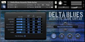 Delta Blues Acoustic Slide Guitar