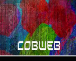 DTs056 - Cobweb