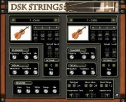 DSK Strings