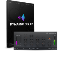 Dynamic Delay