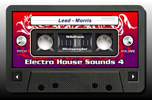 Electro House Sounds 4