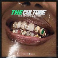 Flame Audio The Culture (Omnisphere 2 Bank)