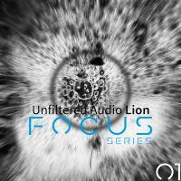 Empty Vessel Focus 01 for Unfiltered Audio Lion