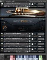 Hammered Acoustic Guitar (Full Bundle)