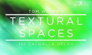 Textural Spaces for Valhalla Delay