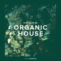 Flavours 2 : Organic House