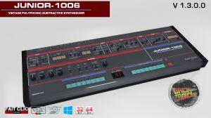 Junior-1006