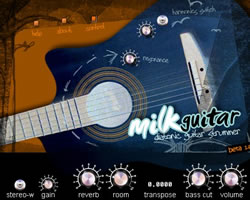 Milk Guitar