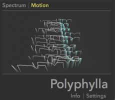 Polyphylla
