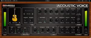 NA Acoustic Voice Preamp