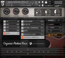 Organic Picked Bass