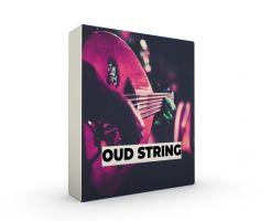 Oud String