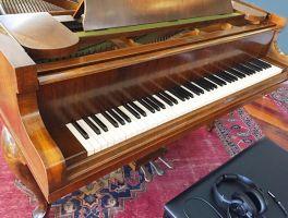 Brandenburg Piano
