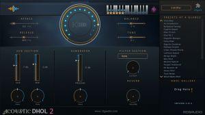 Acoustic Dhol 2