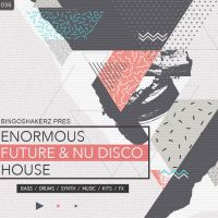 Enormous Future & Nu Disco House