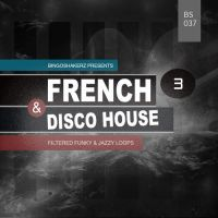 French & Disco House 3