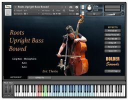 Roots Upright Bass