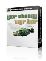 Loop Theory : Trip Hop