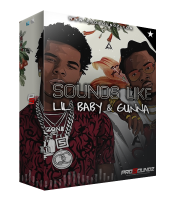 ProSoundz - Sounds Like Lil Baby & Gunna