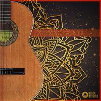 Striking Latin Guitars