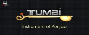 Tumbi Instrument