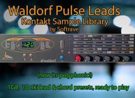 Waldorf Pulse Leads  Kontakt Sample Library