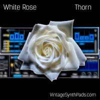 White Rose Presets And Samples for Thorn
