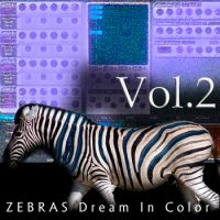 Zebras Dream in Color Vol.2